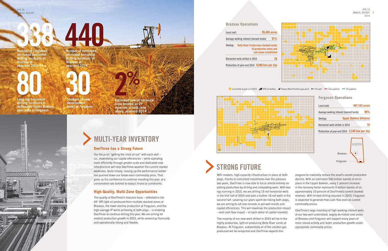 DeeThree Annual Report 2014